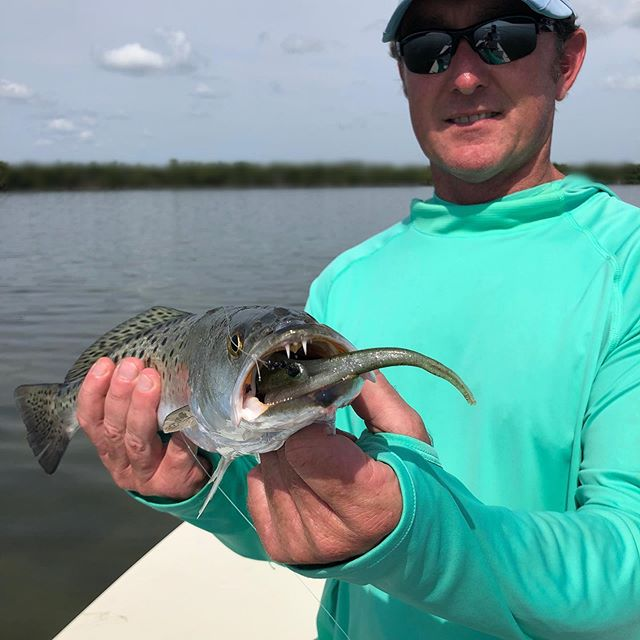 Nice morning throwing artificials. Soft plastics and top waters.  #waterfrontaccommodations #aplacetostayonthelagoon #privateboatramp #privatecharters #diyf ishing #mosquitolagoon #redfish #floridafishing @yeti @costasunglasses @simmsfishing @patagonia @nautilusreels @gloomis #cca #sightfishing #skiffshop #catchandreleaseredfish #zmanfishing #zaraspook