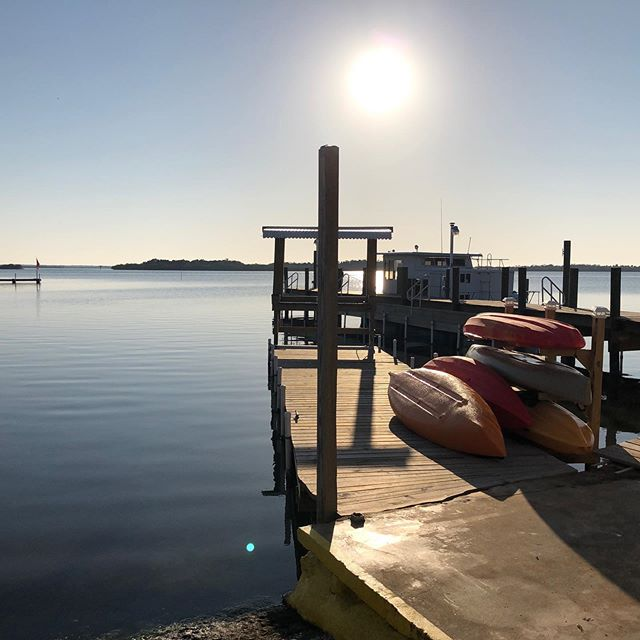 Spring has sprung! Grab some! #waterfrontaccommodations #aplacetostayonthelagoon #privateboatramp #privatecharters #diyf ishing #mosquitolagoon #redfish #floridafishing @yeti @costasunglasses @simmsfishing @patagonia @nautilusreels @gloomis #cca #sightfishing #skiffshop #catchandreleaseredfish #tailingredfish