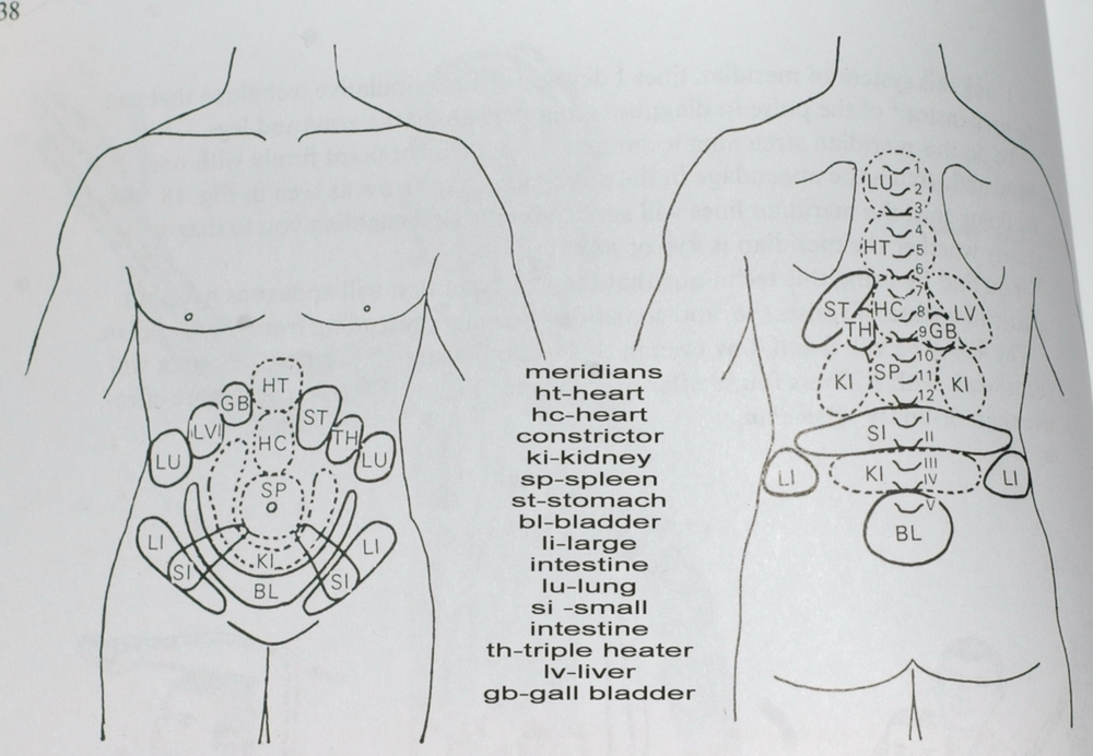 Here is a picture of the Hara associations in Shiatsu.