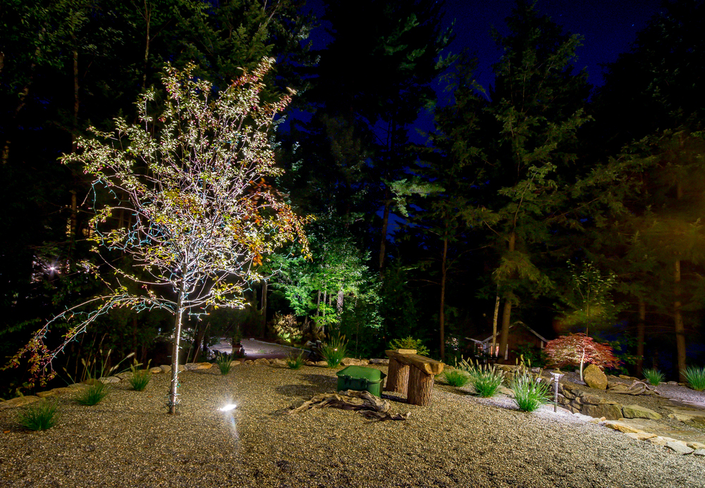 Uplighting trees and other plantings draws the eye and frames the property.