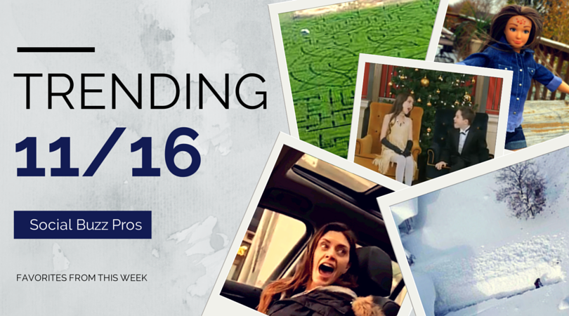 Social Buzz Pros: Favorites from this Week 11/16