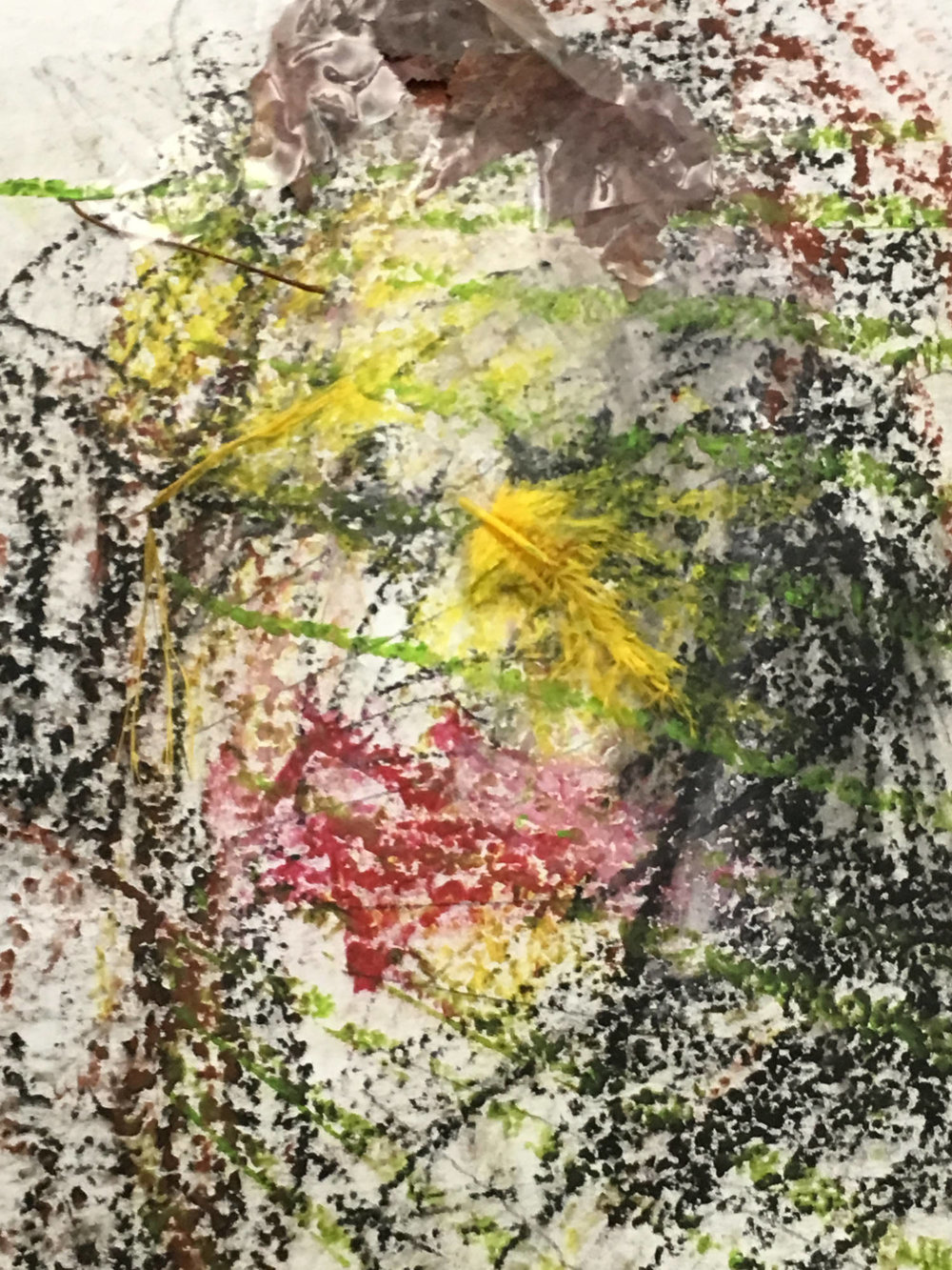 Wilson, Ronaldo V.  Lucy: Self Portrait 1 .2017. (Detail) Artist's Collection, Port Jefferson Station, NY. Water Soluble Pastels, tape, synthetic dyed feathers, flora, on paper. 6 X 2 ft.