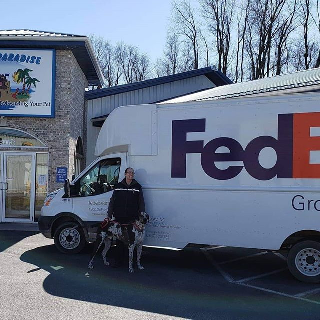 Our FedEx driver graciously posed with Koa to help us get the word out!! Dont forget to vote today and every day until April 1st! https://smallbusinessgrant.fedex.com/home/detail/8abe86bf-731e-4ca7-90d7-d61778748424