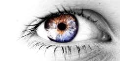 Iridology - the study of the iris - the colored part of the eye.