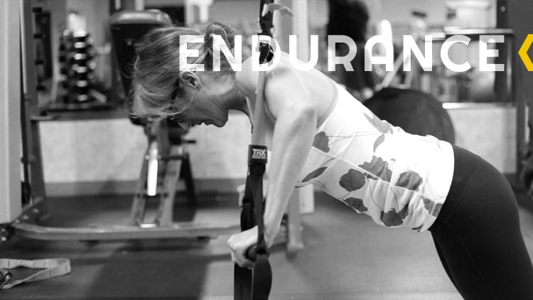 BOA_slides_0005_endurance.png