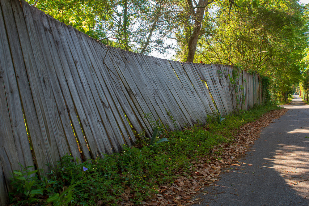 alley fence (1 of 1).jpg