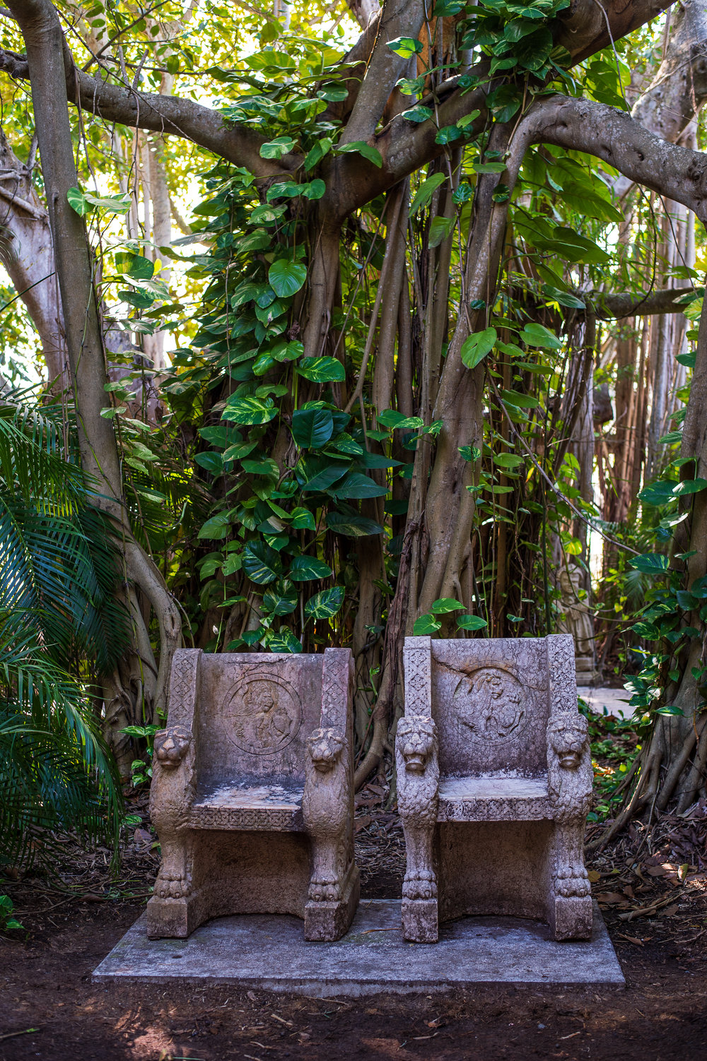 ringling banyon chairs.jpg