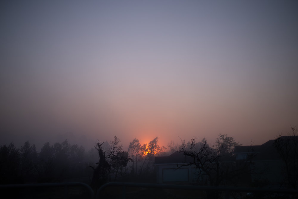 sunrise through fog over fence.jpg
