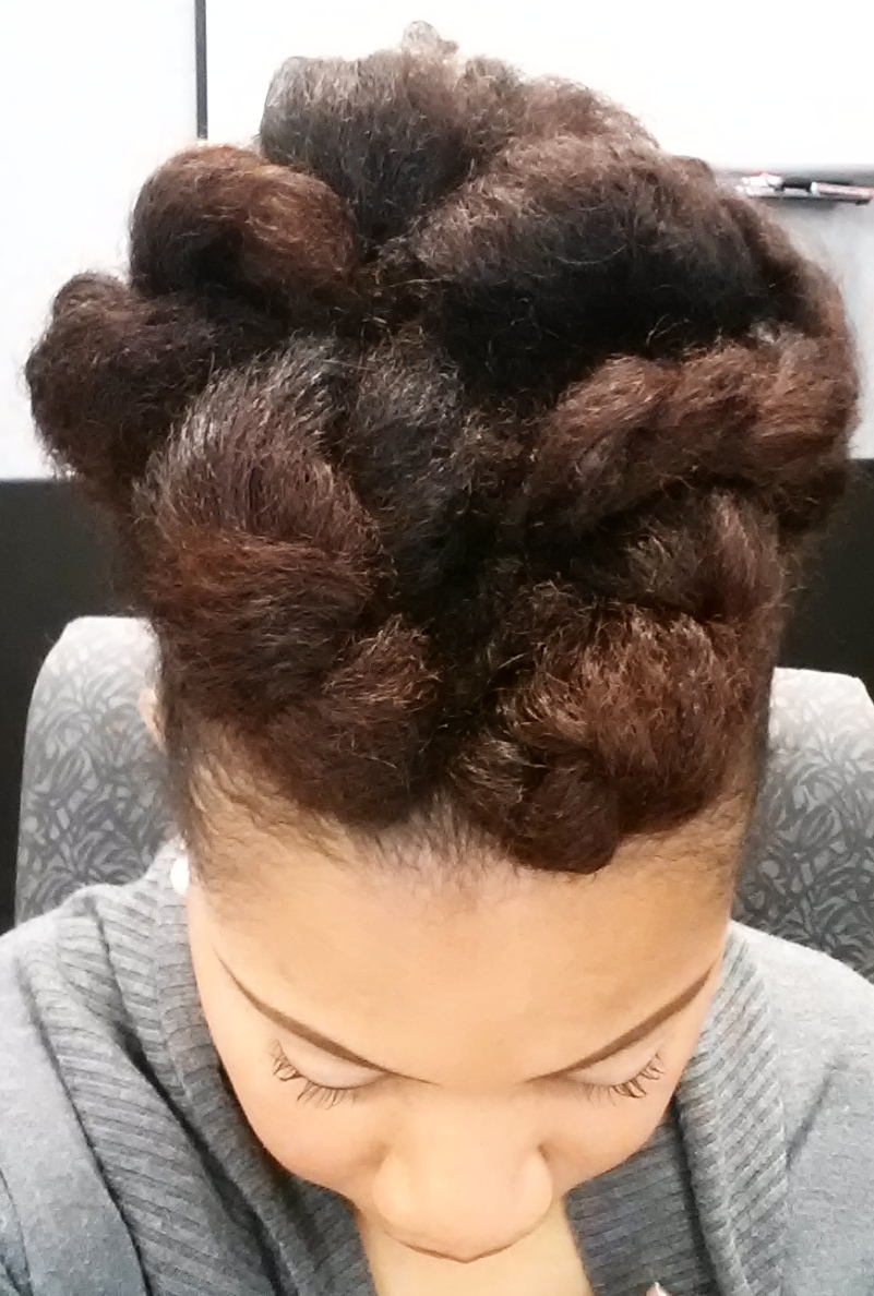 Protective Updo Style