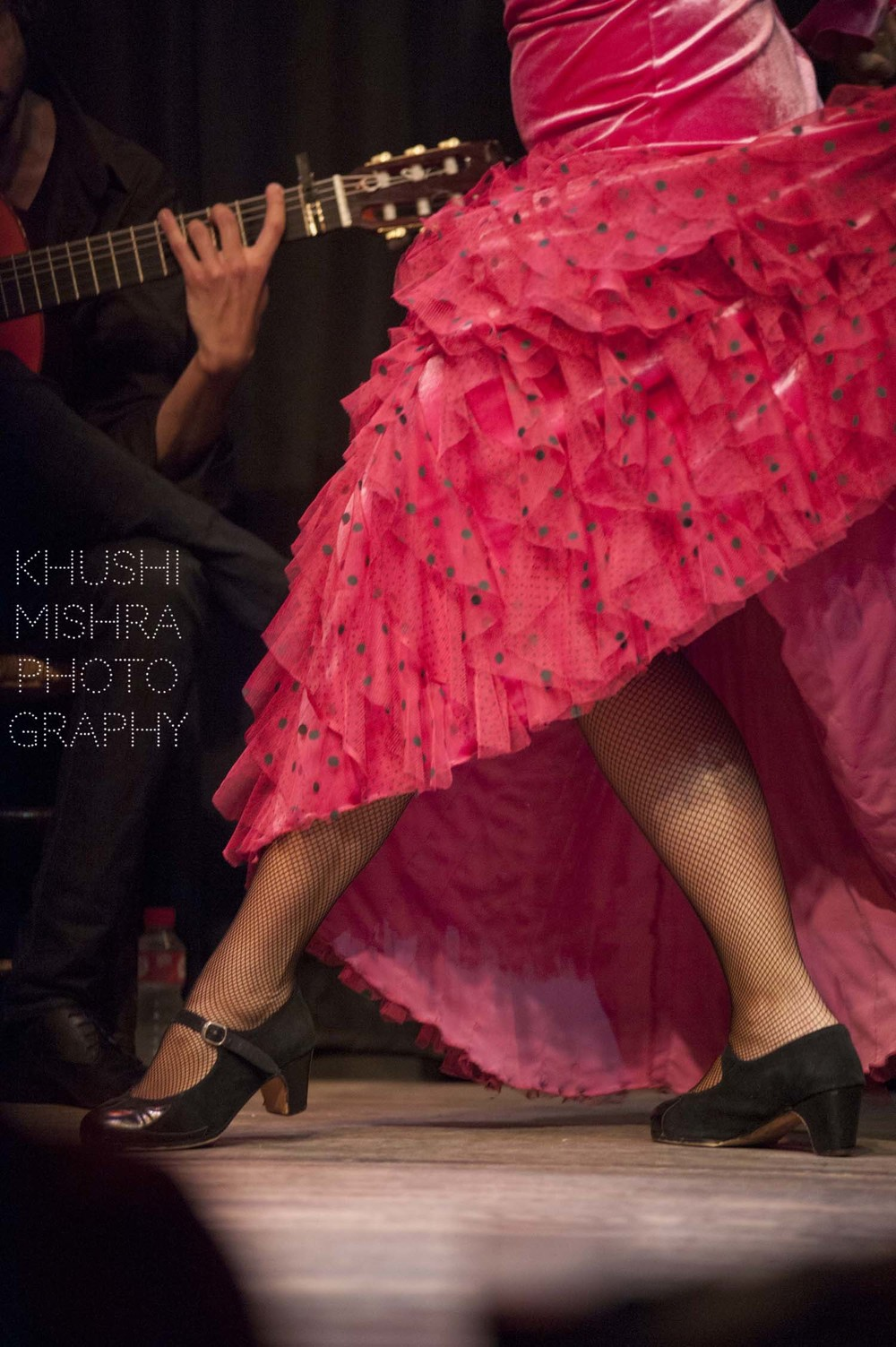 Flamenco_dsc_7932 copy.jpg