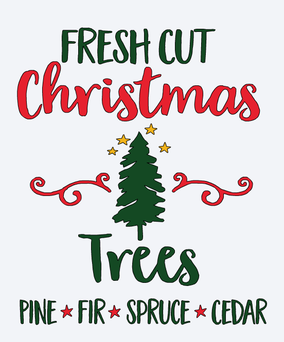 Fresh Cut Christmas Tree