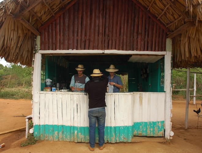A horseback ride tour will take you to a coffee, rum and sugar farm.