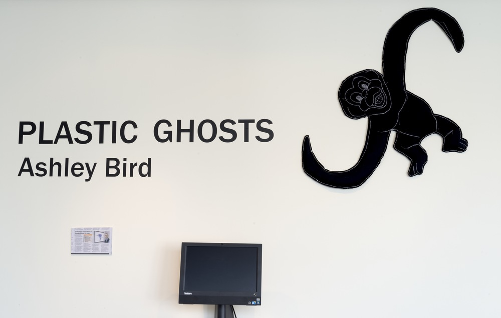 Plastic Ghosts 2015 - installation