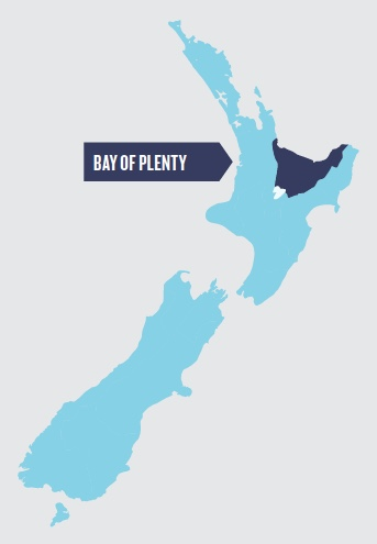 Bay of Plenty.jpeg