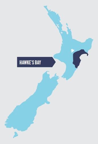 Hawkes Bay.jpeg