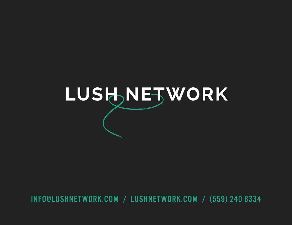 LUSH_20-CONTACT.png