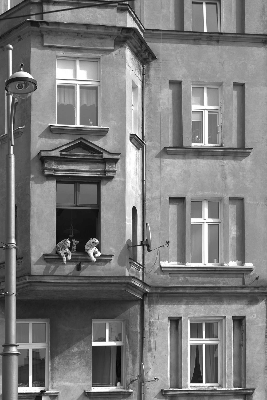 Wrocław-Poland sept/2014