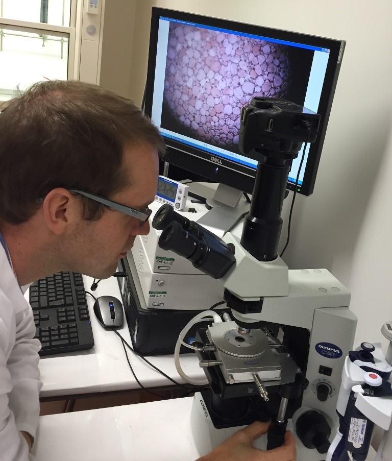 Dr Matt Gibson using the Linkam BCS196 cryobiology stage to study ice recrystallisation inhibition activity.