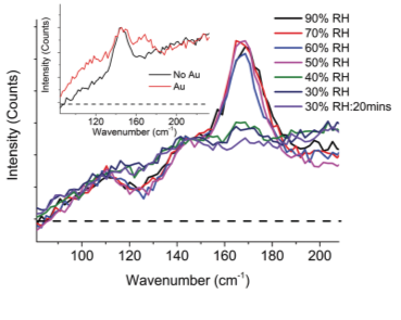 Figure 1: The in situ raman spectra highlights the reversible dihydration when relative humidity is decreased but also indicates the presence of a dehydrated species in the Au region.