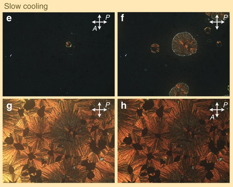 Polarised optical photomicrographs of liquid crystals show the change in texture caused by slow cooling.