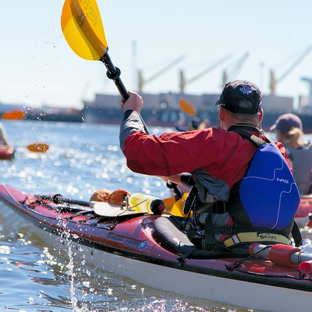 Kayaking in Saint John Harbour with WWF Canada.