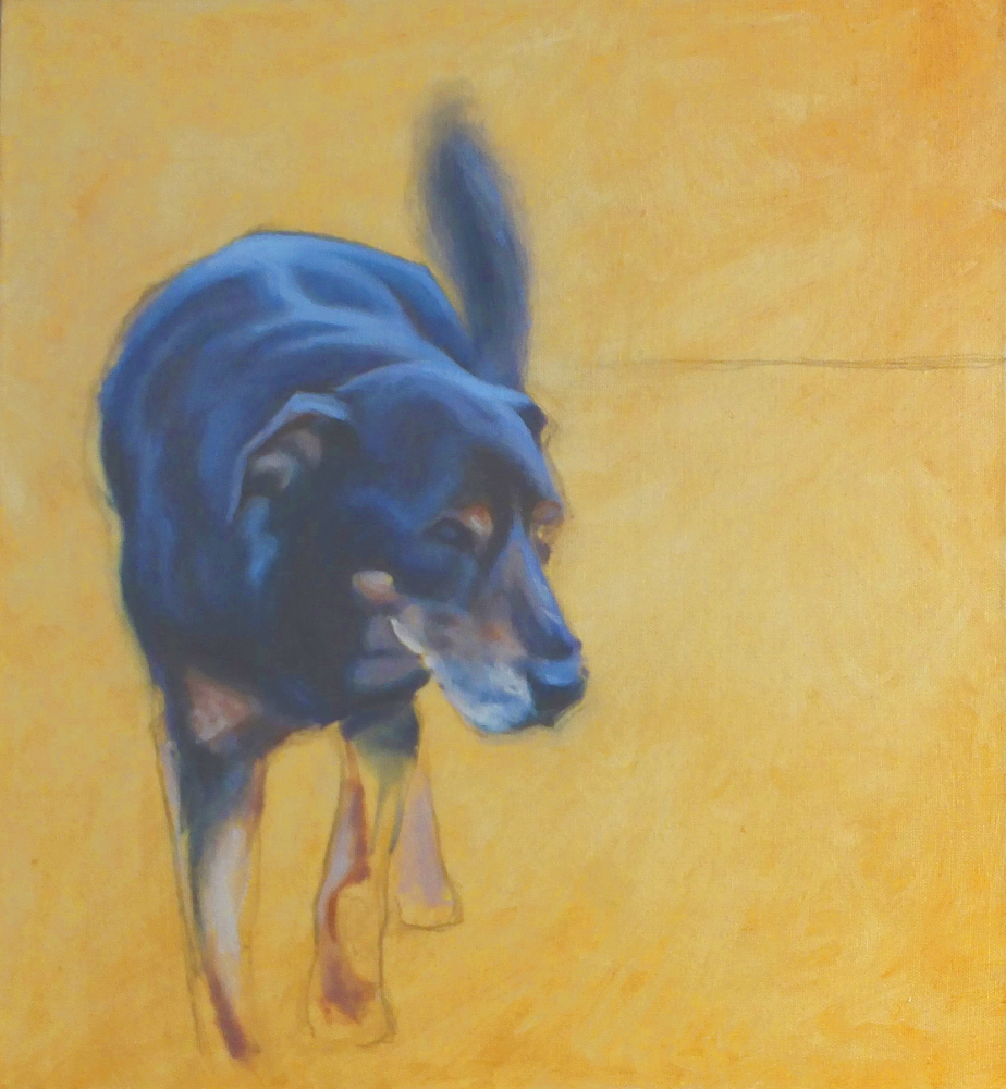 Parsley pet portrait oil on canvas loose realism.JPG