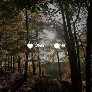 instagram-follow-squarejpg