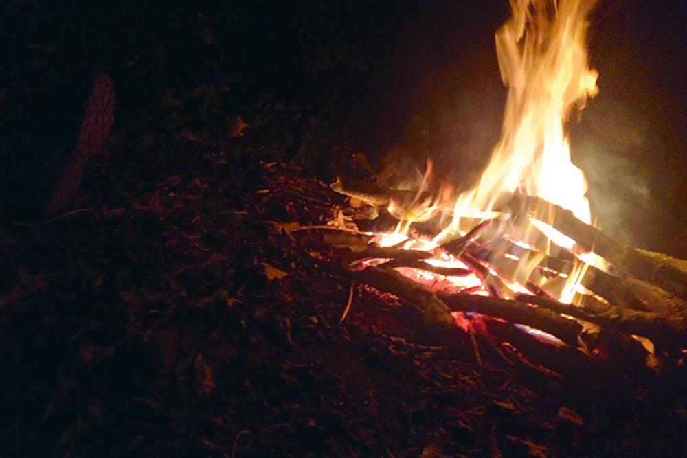 firegazing.jpg