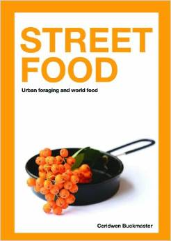 『Street Food: Urban foraging and world food』 by Ceridwen Buckmaster / photos by Nemoroberts   more info and images about this book