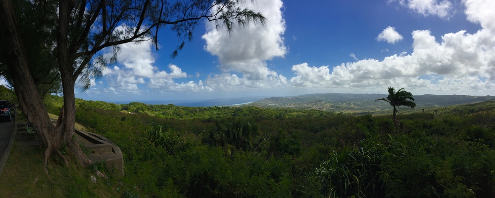 Looking east from the top of Farley Hill National Park, Barbados.