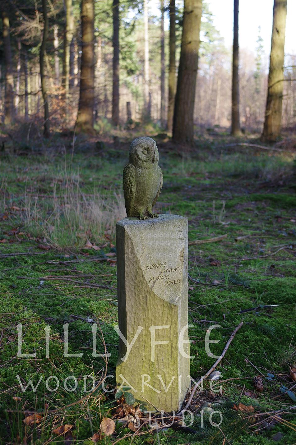 watermark owl.jpg