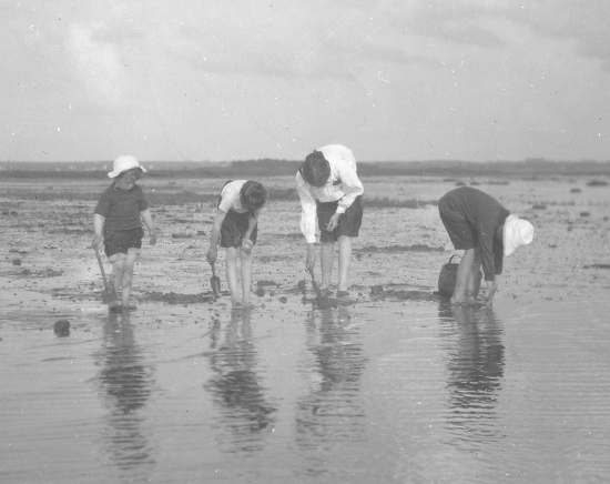 archive clam digging.jpg