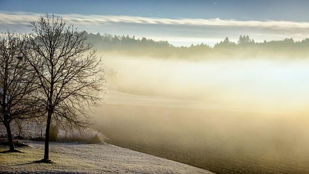 winter-598632__340.jpg