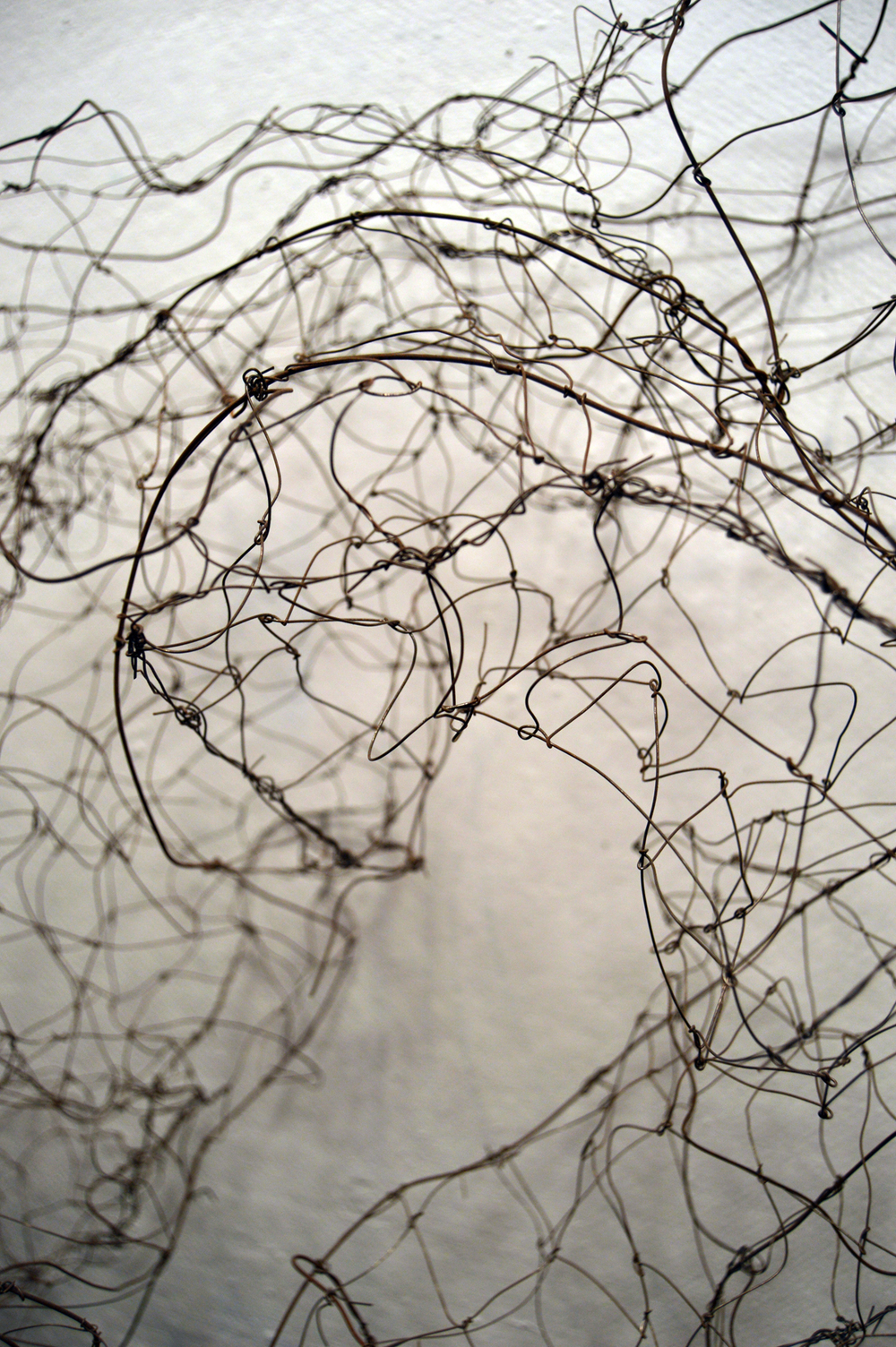 WireWorks Loop detail, anealed steel, 600.jpg