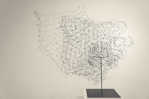 WireWorks_Delve, annealed steel, welded steel, 2500, 56x48x45.jpg