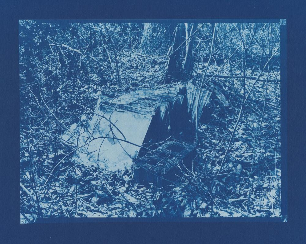 Slow Glass, Cyanotype, 6.5x8.5.jpg