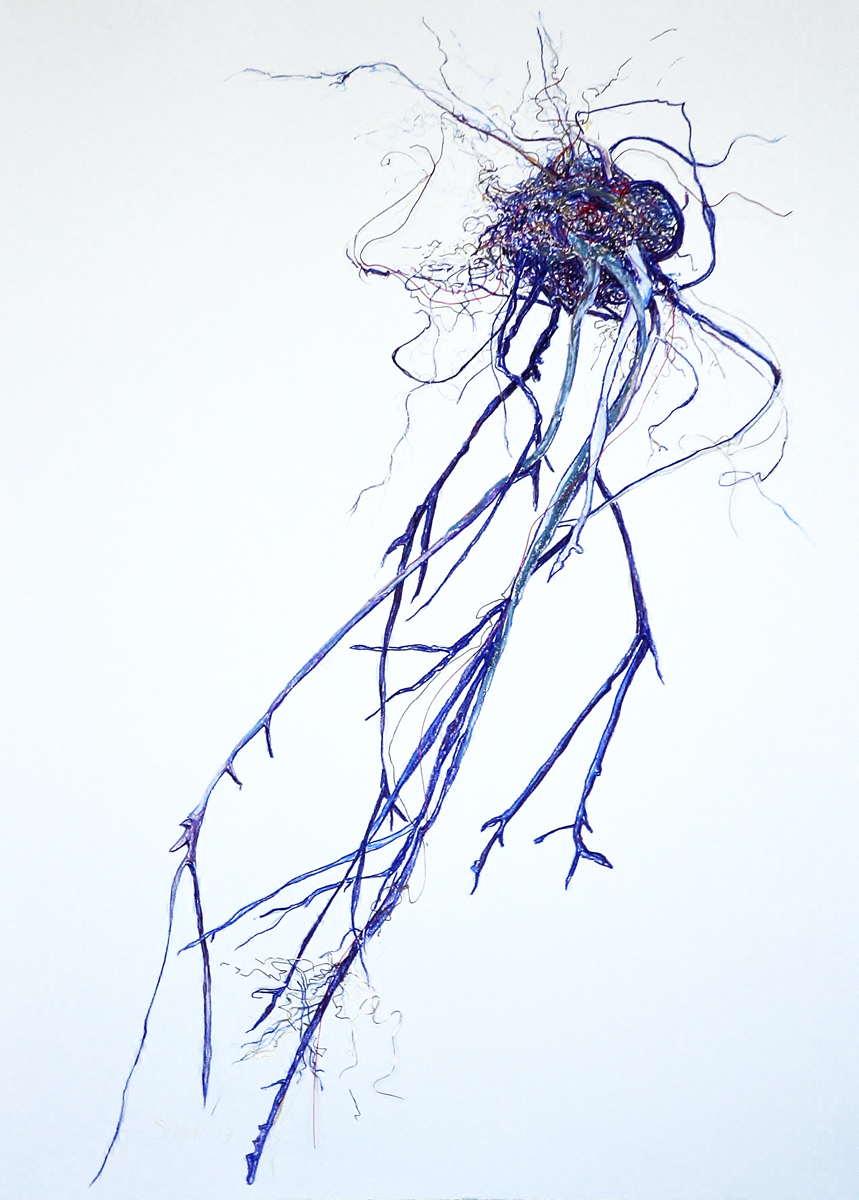 Jelly fish tendrils  Pastel and wire on paper  34 x 27 in. 2013