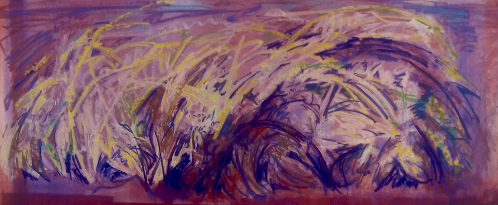 Wild Grasses  Monoprint on paper  27 x 44 in.