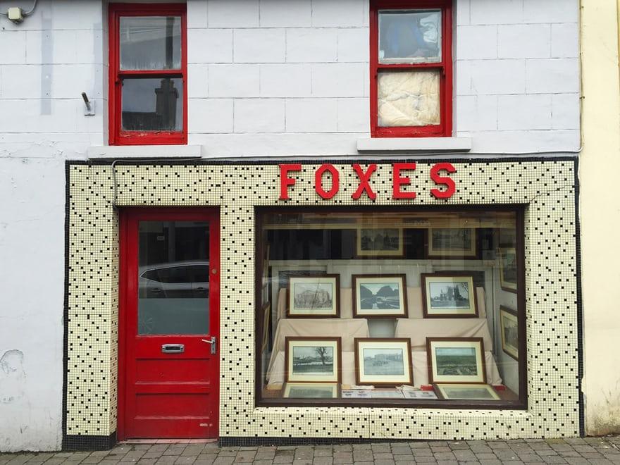 Foxes.jpg