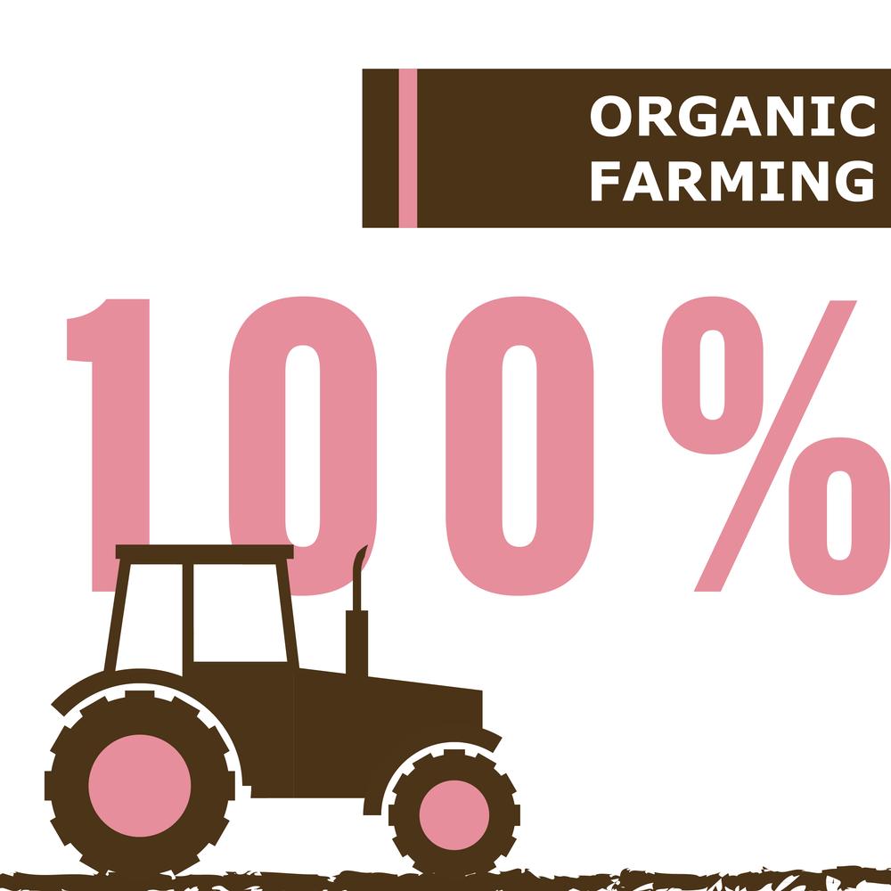 Bakery Cakery | Core Values | Live Organic | Organic Farming
