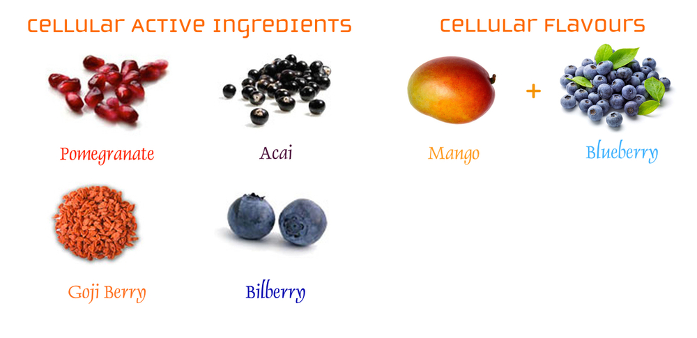 Cellular Ingredients.jpg