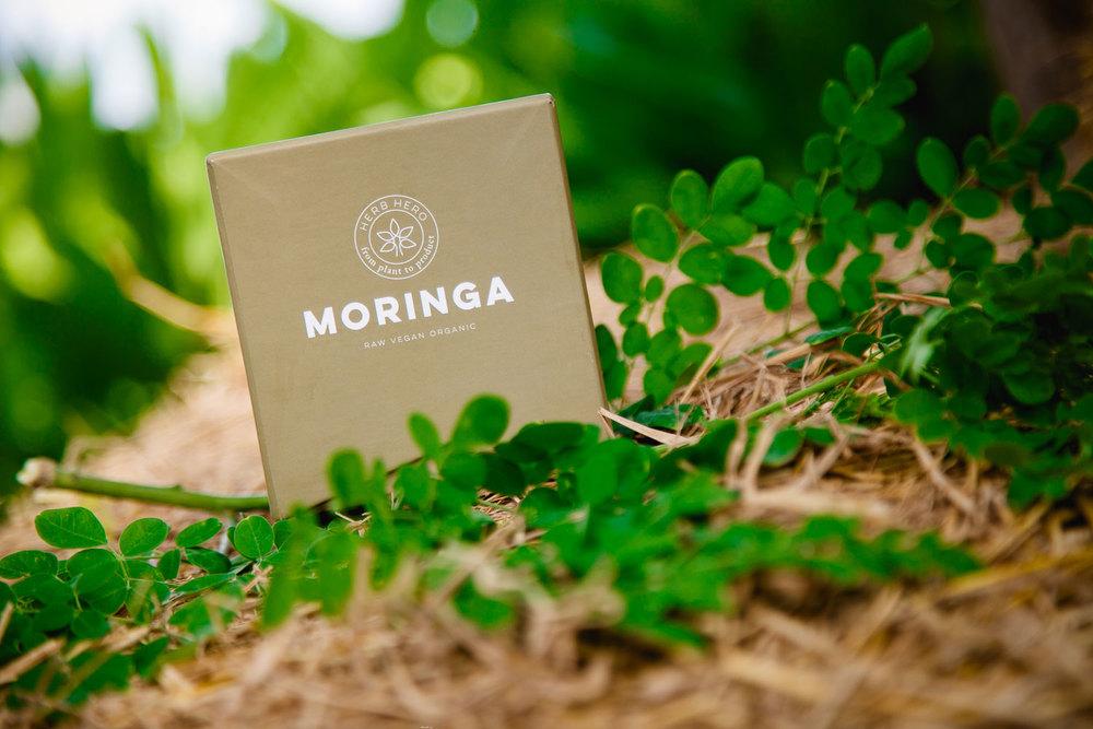 Herb Hero Moringa