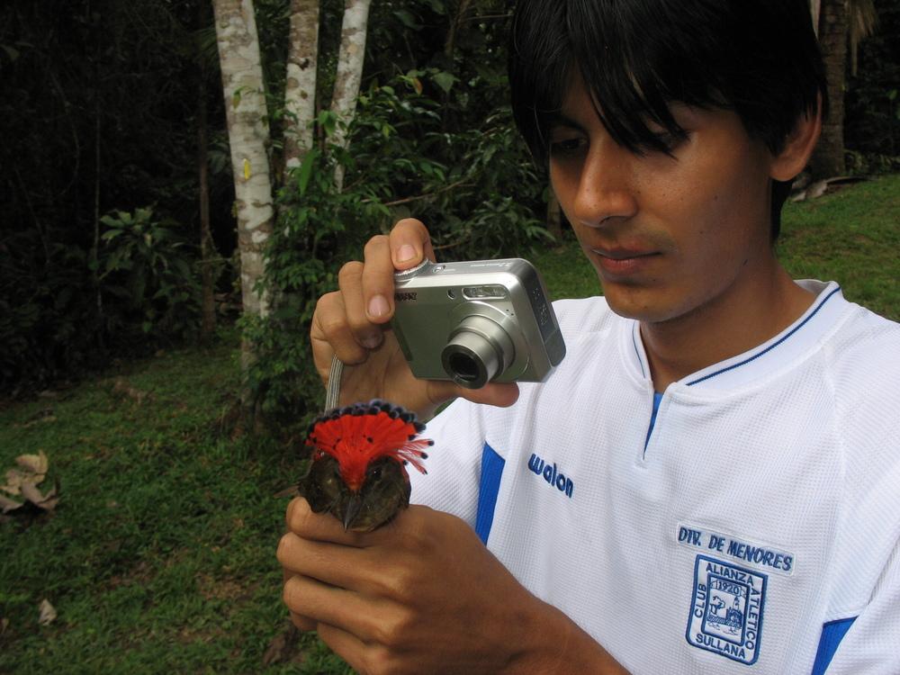 Aldo w flycatcher_20080721_1.jpg