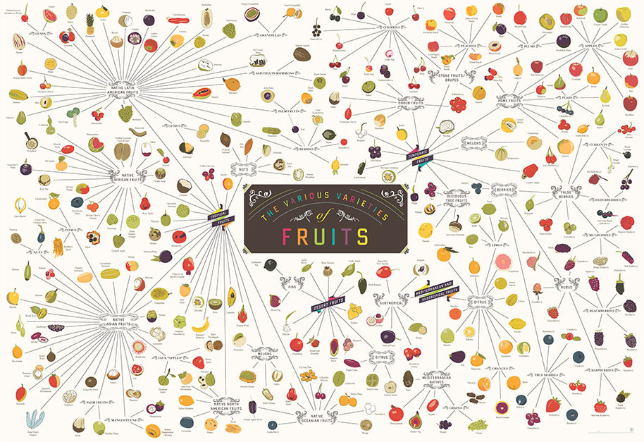 The Various Varieties of Fruits by Pop Chart Lab    http://popchartlab.com