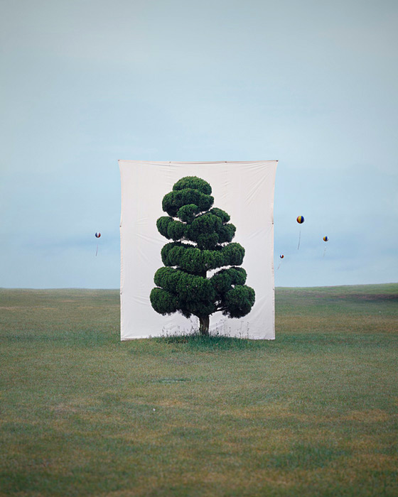 Tree Series by Myoung Ho Lee    http://www.yossimilo.com/artists/myou_ho_lee/