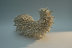 Porcelain sculptures by Nuala O'Donovan. High-fired unglazed porcelain. The pattern is based on the flower of the Teasel Plant. The form is a result of allowing and compounding irregularities in the handmade pattern.  http://www.nualaodonovan.com/