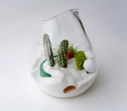 Fantastic and beautiful (and affordable) terrariums from Litlill. www.Litlill.com