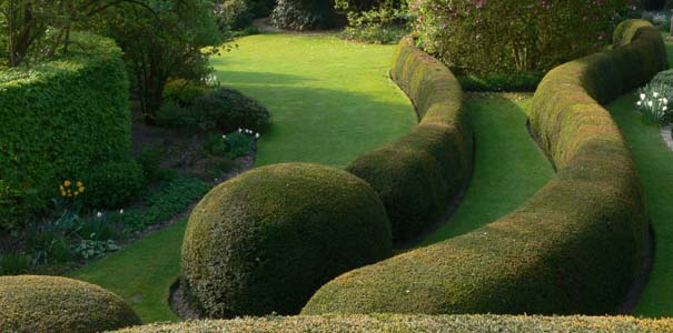 Private garden by Wirtz International, Belgium