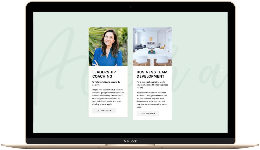 Brine template Squarespace website design.png