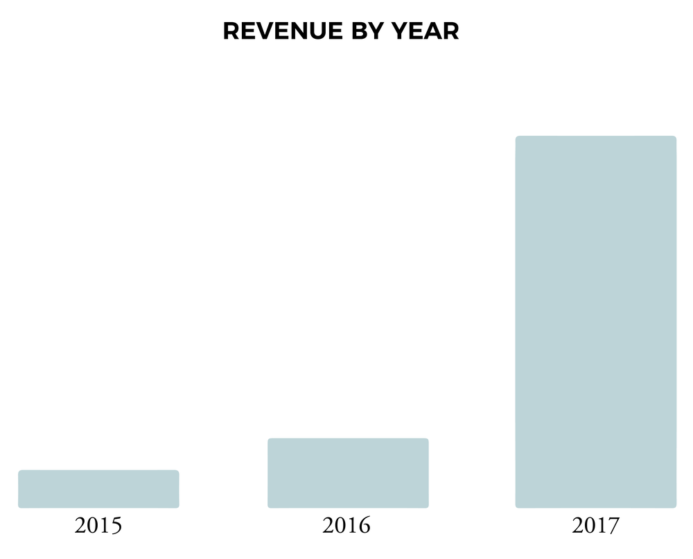 revenue by year chart